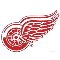 Master NHL Detroit Red Wings Towel