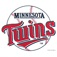 Master MLB Minnesota Twins Towel