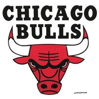 Master NBA Chicago Bulls Towel