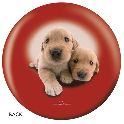 OnTheBallBowling Golden Retriever Back Image