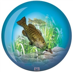 Brunswick Bass Fishing Glow Viz-A-Ball Back Image