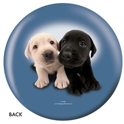 OnTheBallBowling Labrador Retriever Back Image