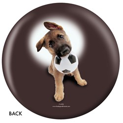OnTheBallBowling German Shepherd Back Image