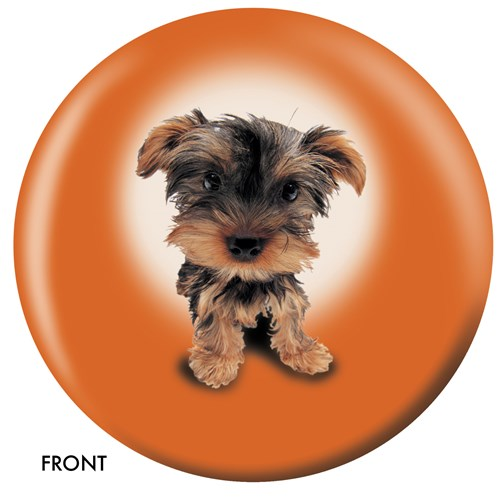 OnTheBallBowling Yorkshire Terrier Main Image