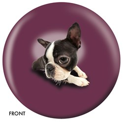 OnTheBallBowling Boston Terrier Main Image