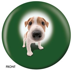 OnTheBallBowling Jack Russell Terrier Main Image